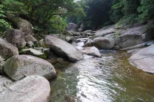 釣れやすい川