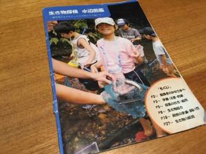 生き物探検 水辺の生き物図鑑