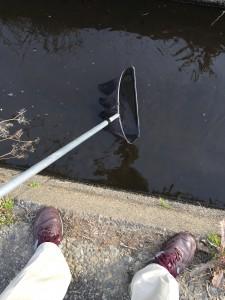 今日は水の中には入りません。